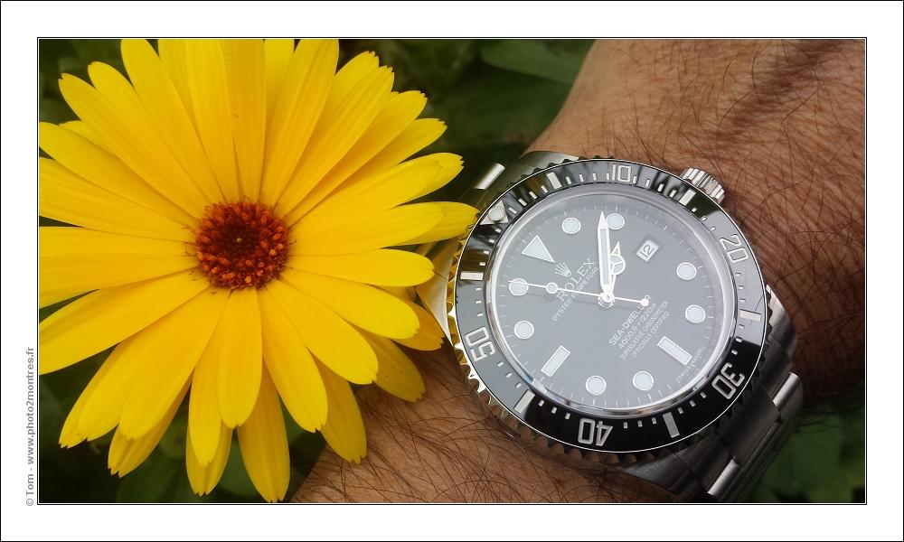 La montre du vendredi 13 novembre 2015 Rolex_SD_116600_20151112_140810