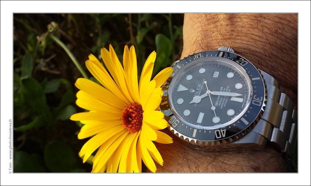 La montre du vendredi 24 novembre 2017 - Page 2 Wristshot-20151224_102844