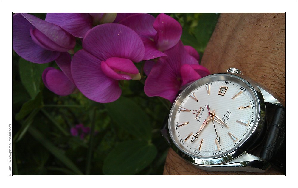 ****La montre du jour ! vol. 13**** - Page 2 Wristshot-IMAG1220